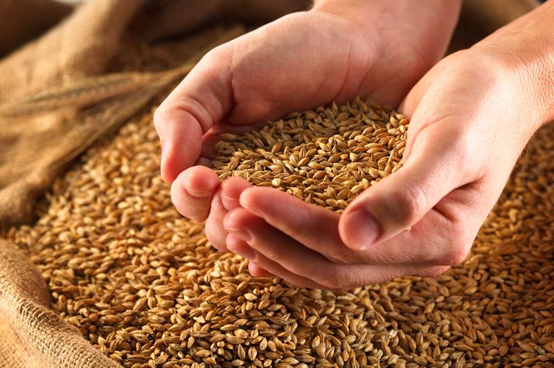 Moulin de Moulbaix du grain à la farine